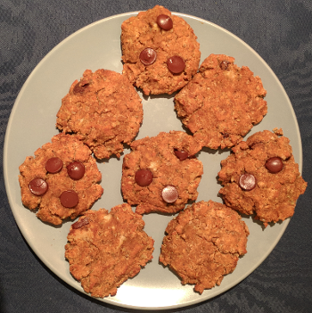 Gluten Free Coconut Oatmeal Protein Cookies
